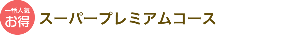 一番人気お得 スーパープレミアムコース 871円(税込)